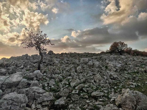 DNF Dalmacija Ultra Trail